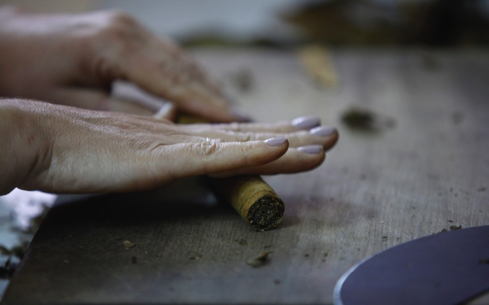 cigar4_web