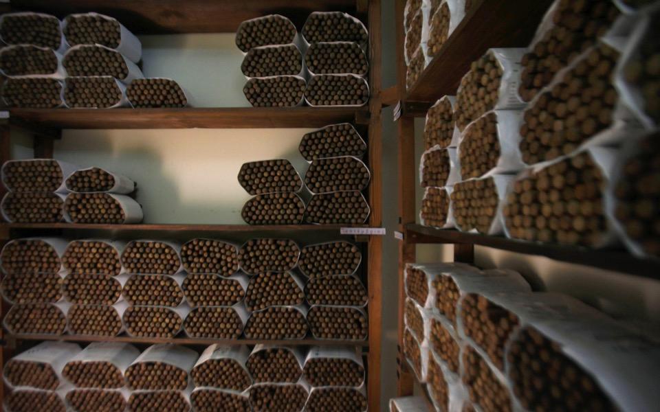 cigar6_web