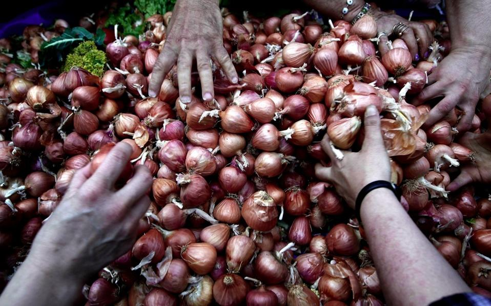onions_web
