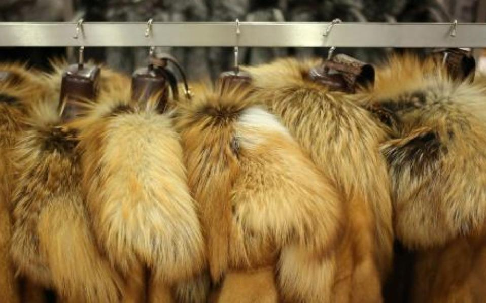 using animal fur is a fashion The pitiless fur industry mistreats and kills more than 50 million animals a year with many warm, chic alternatives available, there's no reason to wear animal fur.