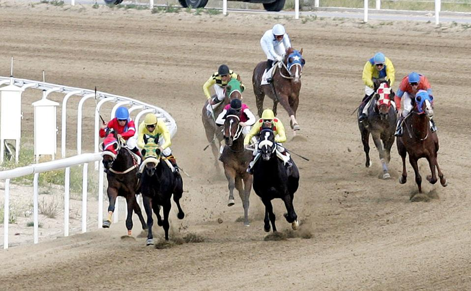 horse_racing_web