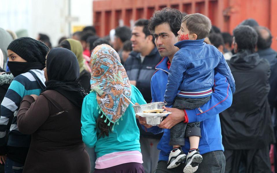 migrants_food_web