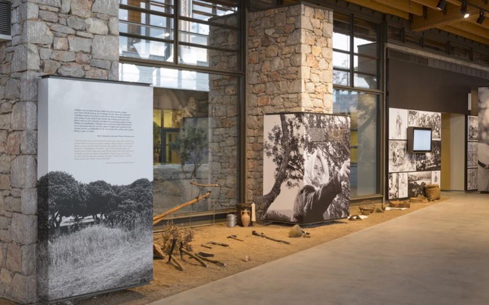 Chios Mastic Museum dedicated to precious gum  Life ...