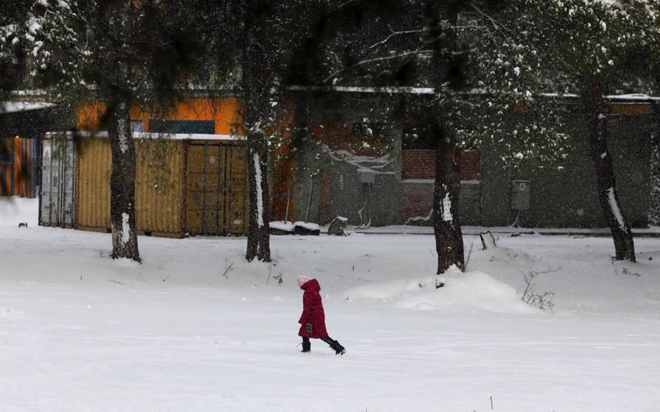 snow_refugee_web