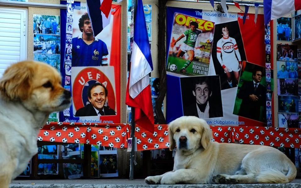 Dogs sit near pictures of the French former soccer player and administrator Michel Platini in a museum dedicated to him, owned by Philippos Stavrou Platini, who legally adopted his sports hero's surname, in Mosfiloti, Cyprus.