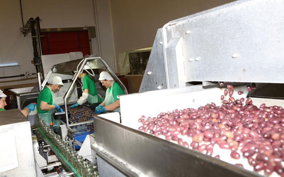 exports_olives_web