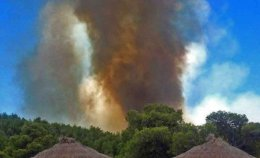 The blaze on Spetses burnt part of the forest between Aghii Anargyri and Xylokeriza.