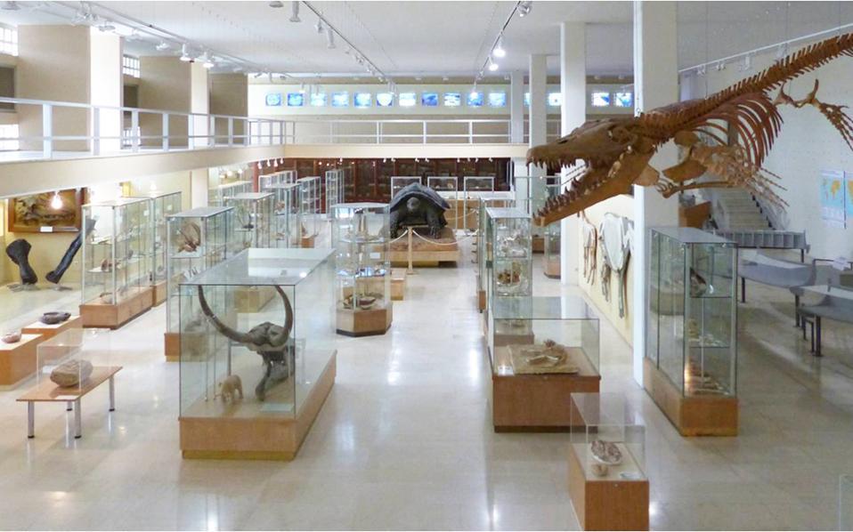 paleontology_museum