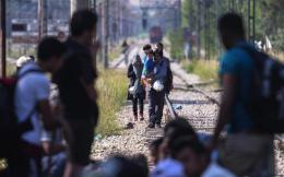 migrants_train--2-thumb-large-thumb-large