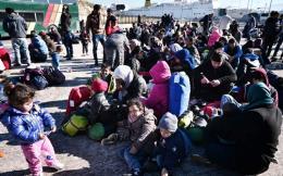 refugees_web