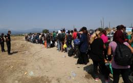 migrant_line