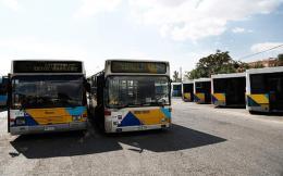 busses--2