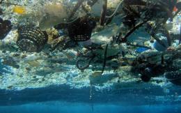 plastic_seas