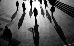 shadows_web