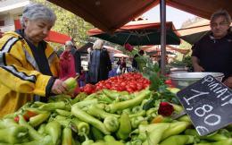food_market_web