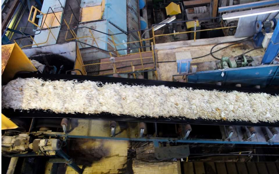 industry_sugar_web