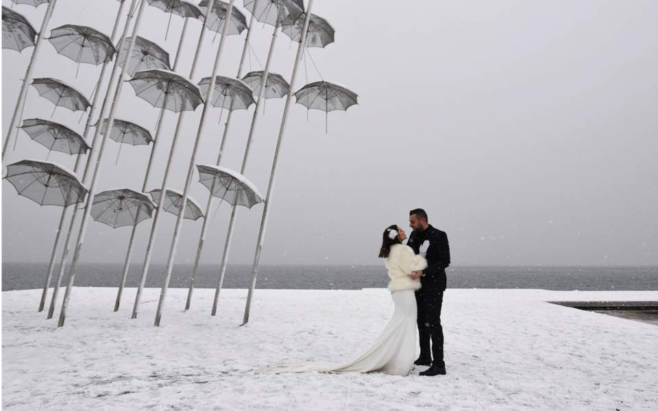 snow_web--2