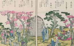 japan_books
