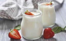 yogurt_web