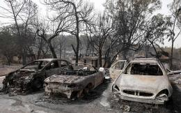 burnt_cars_israel_web