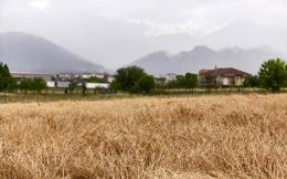 rural1