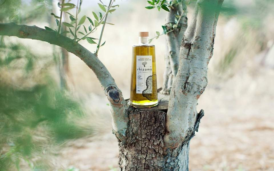 olive_oil_export_web