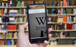 wikipedia_web