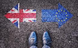 brexit-signs1-thumb-large-thumb-large