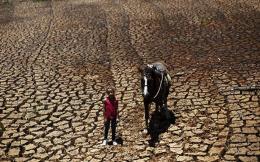 drought_web-thumb-large