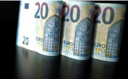 euros_web-thumb-large