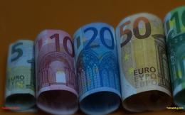 cash_rolls_web