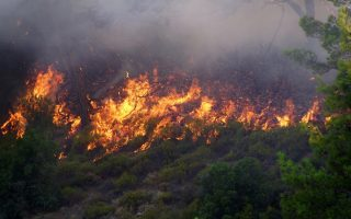 children-amp-8217-s-camp-evacuated-as-firefighters-try-to-contain-xylokastro-blaze