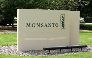 latvia-greece-win-opt-out-from-monsanto-gm-crop