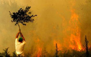 messinia-fire-comes-under-control