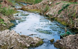 high-court-orders-state-to-tackle-asopos-river-pollution-issue