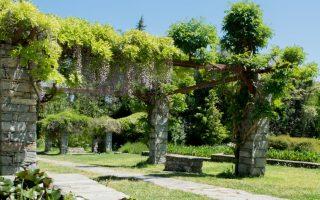 diomidis-botanical-garden-a-treasure-of-nature