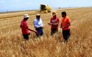 farmers-to-protest-in-tripoli-on-monday