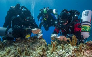 wreck-survey-fails-to-find-more-parts-of-ancient-cog