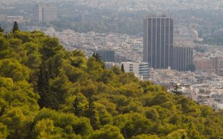 wwf-greece-introduces-app-aimed-at-mapping-urban-green-areas
