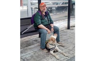 guide-dog-broadens-horizons-of-visually-impaired-man