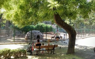 world-environment-day-athens-june-5
