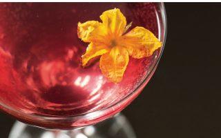 drink-pink-athens-june-12