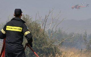 firefighters-battle-blaze-on-forestland-near-patra
