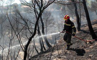 halkidiki-fires-come-under-control