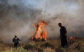 forest-fire-breaks-out-near-ioannina