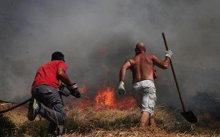 firefighters-battle-blaze-in-crete