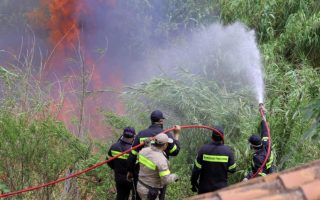 firefighters-battle-forest-fires