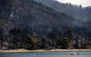 thousands-of-hectares-razed-by-evia-wildfire