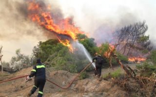 firefighters-battle-forest-fire-on-mount-taygetus