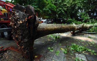 summer-storms-lash-parts-of-greece